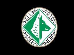 Avellino-Albalonga, Serie D seconda giornata: prezzi biglietti e canali di acquisto
